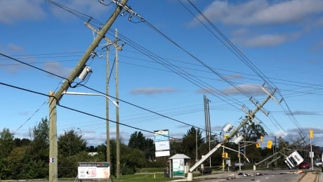 Canada's cellphone system vulnerable in disasters, say experts thumbnail