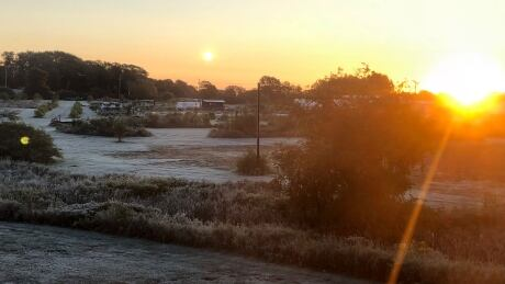 '1st real killing frost' may have set cold records on P.E.I.