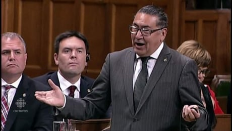MP drops F-bomb in Commons, accuses Trudeau of not caring about Indigenous rights