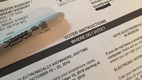 Have you received your voter information card? Make sure it's yours, city says thumbnail