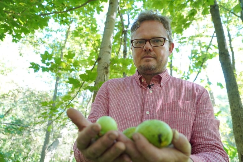 The Ontario fruit that sounds 'too mythical, too bizarre to be true'