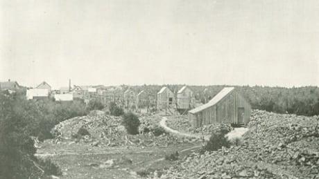 Montague gold mine