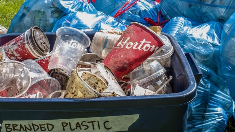 Coke, Pepsi, Nestle top makers of plastic waste: Greenpeace