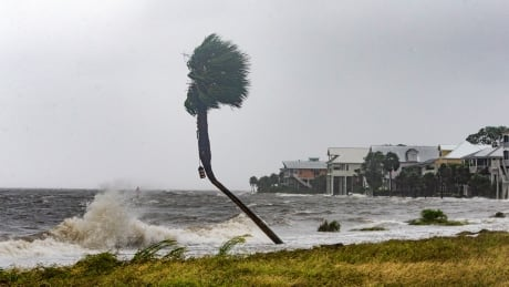 michael on pace to be 1st category 4 hurricane to hit florida panhandle