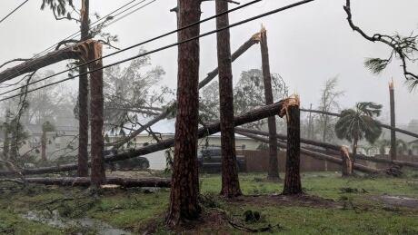 hurricane michael heads to georgia as category 3 after slamming florida
