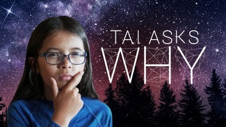 CBC to adapt Tai Asks Why, Someone Knows Something podcasts for screen