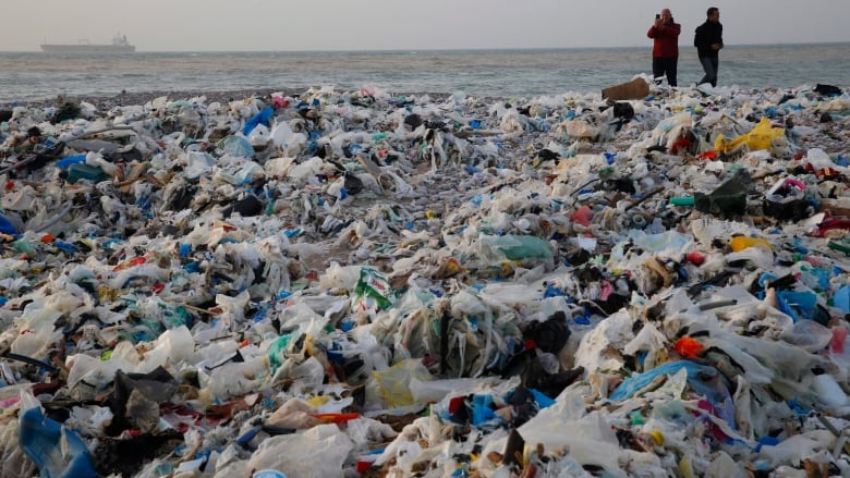 lebanese government responds to mounting trash crisis by dumping it