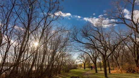 Fall weather finally back in Saskatchewan but how long will it last?