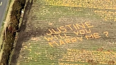 640 pumpkins spell marriage for Vancouver Island couple