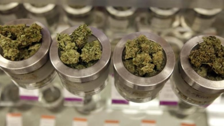 Yukoners buy the most legal pot per capita from retail stores in Canada, study says