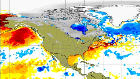 son of the blob unseasonably warm weather creating new anomaly off b c coast