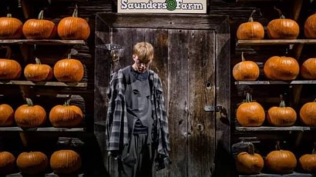 Saunders Farm Fright Fest workers left with concussions after attack  | CBC News