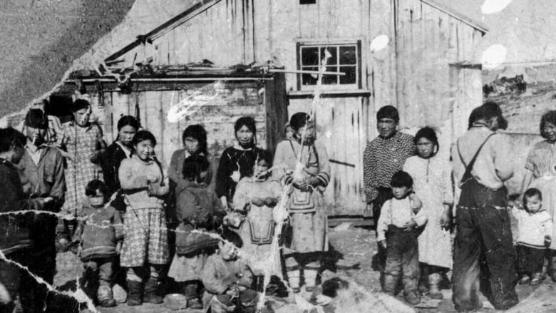 Federal government apologizes to Baffin Inuit for sled dog killings, forced relocations