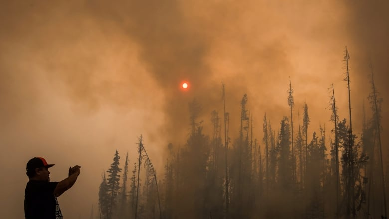 Can government incentives to private companies help solve B.C.'s wildfire crisis? | CBC News