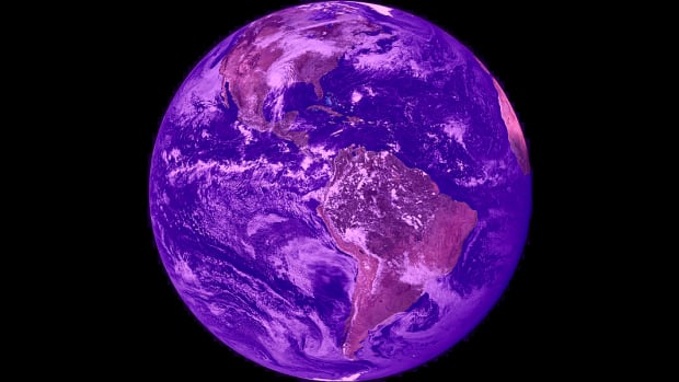 purple reign  life on earth might once have been dominated