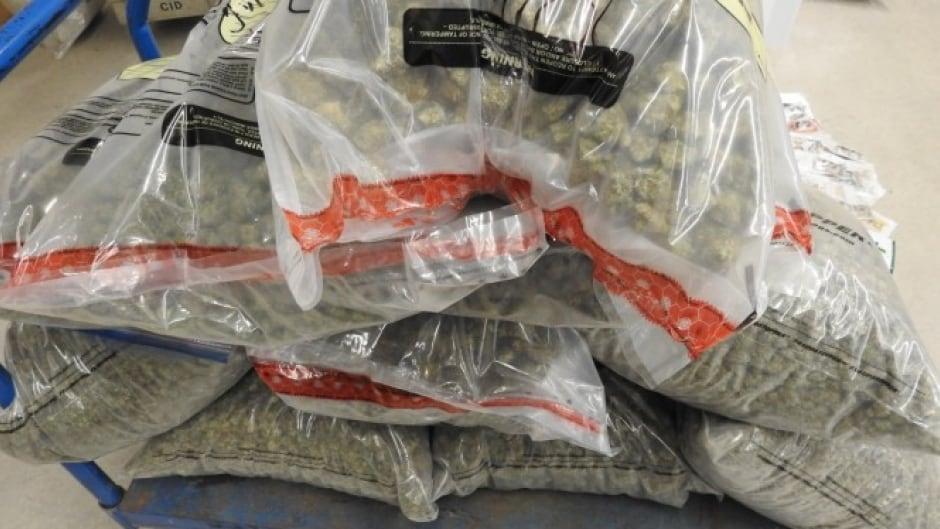 Hamilton police arrest staff, seize 40 kg of cannabis from Georgia