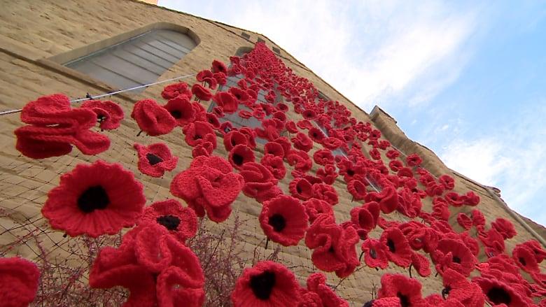 More Than 7 000 Knit Poppies Cascade Down Calgary Church For