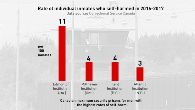 I'm already dead': Edmonton prison has highest self-harm