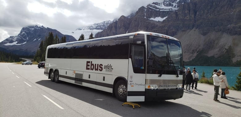 Is German Flixbus The Fix For Canada S Bus Woes Cbc News