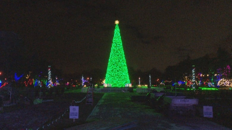 Bright Lights festival expected to be bigger and feature new displays this  year. (Dale Molnar/CBC) - Bright Lights Returns To Windsor With Holiday Market Of Local