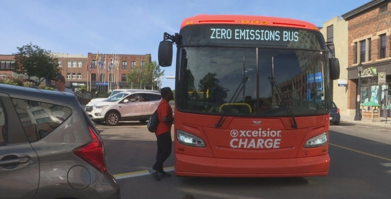 Electric Vehicles Of All Types Including Buses Are