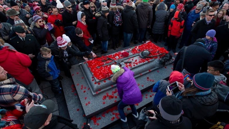 Here's where Remembrance Day ceremonies are being held in Ottawa