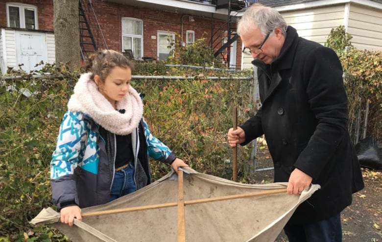 10-year-old Montrealer finds spider never before seen in Quebec