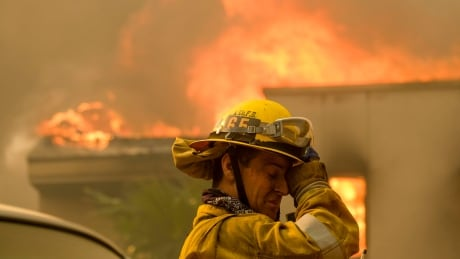search for bodies underway as california wildfires continue to burn