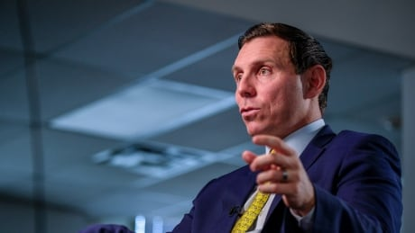 Patrick Brown cites sexual misconduct allegations against Ontario finance minister in new book