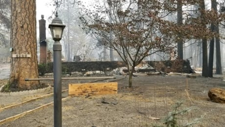 Why do houses burn but trees remain? Photos from California wildfires reveal lessons for B.C.