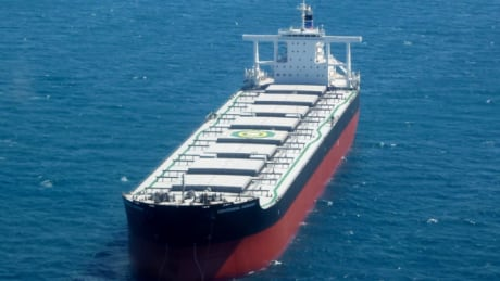 Panamanian carrier safe off St. John's, after issuing distress call