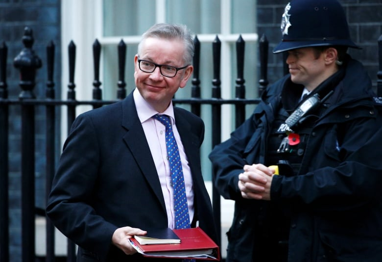 Gove: I plan to do some work on the environment