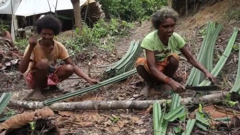 Batek People: Tiny People Have Evolved In Rainforests Because It's Where