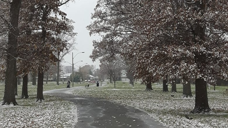 winter in windsor missing in action says environment canada cbc news
