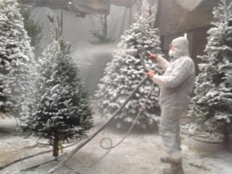 Christmas Tree Spray Snow.Flocking Gives West Coast Christmas Trees That Snowy Look