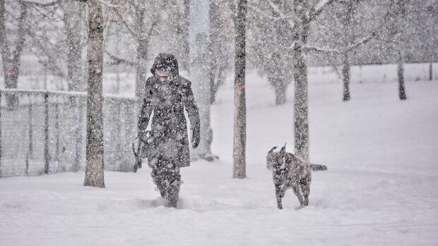 +18 - O ritual de passagem - Página 5 Montreal-snow