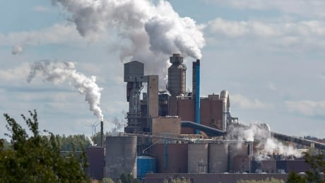 Here's what the N.S. government wants from Northern Pulp's treatment proposal