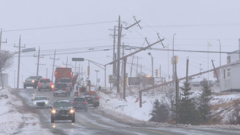 Strong Winds And Heavy Snow Brought Down A Lot Of Power