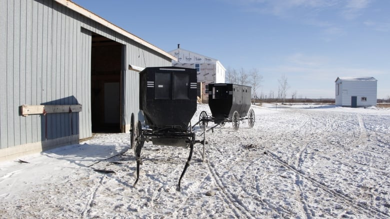 1st Amish settlement west of Ontario prepares for Prairie