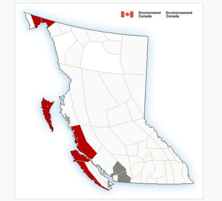 Extreme winds and winter storms blow into parts of western B.C.