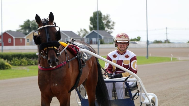 Group wants harness racing industry to get younger | CBC News