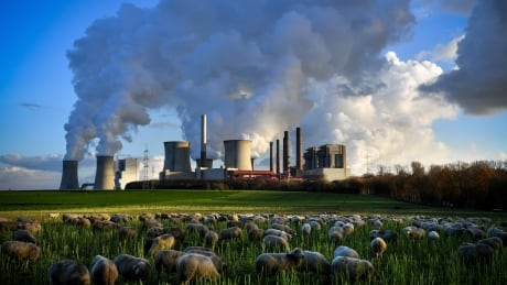Trump throws another wrench into COP24 with 'clean coal'
