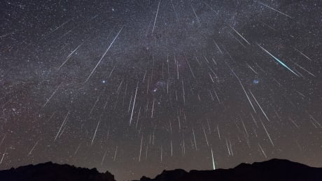 Heads up! Geminid meteor shower peaks this week | CBC