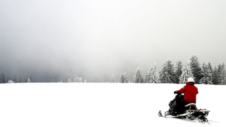 Snowmobile guide dies after rollover near Sicamous, B.C.