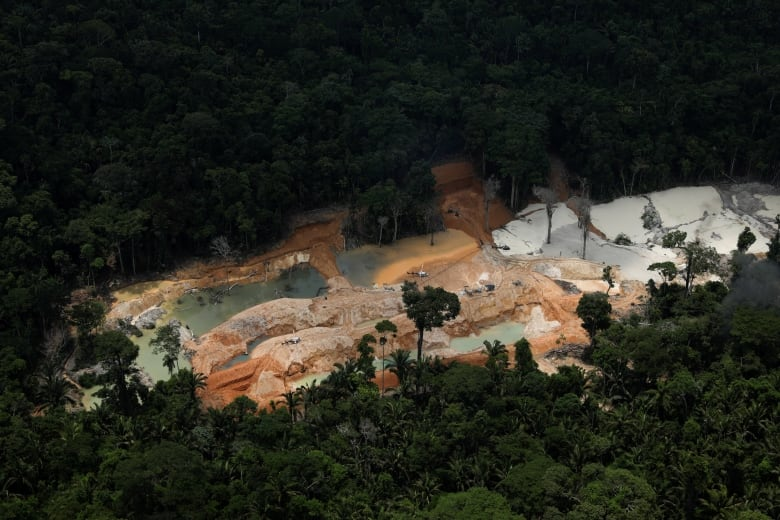 Environmental agents set machines on fire in Amazon rainforest to curb illegal mining 'epidemic'