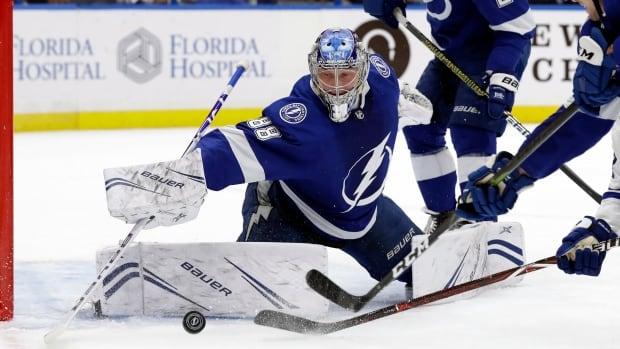 Maple Leafs Lightning Hockey