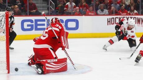 Senators Red Wings Hockey