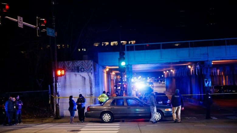 Two Chicago police officers killed by passing train