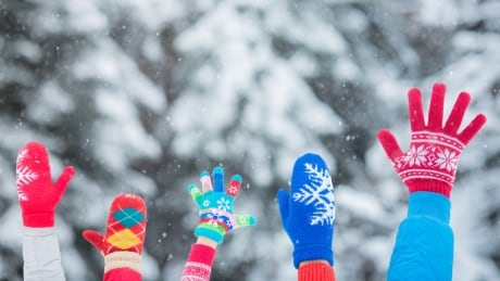 What to do on Family Day Monday in Waterloo region, Guelph