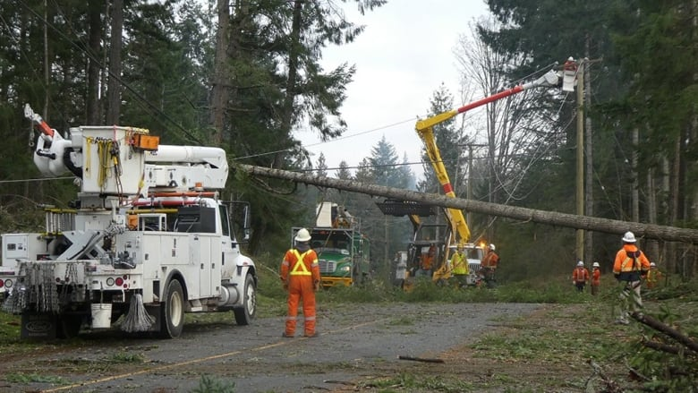 B C  blackout: More delays expected for power restoration to